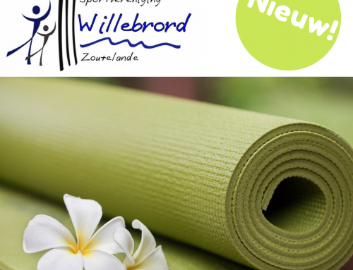 Yoga bij Sportvereniging Willebrord